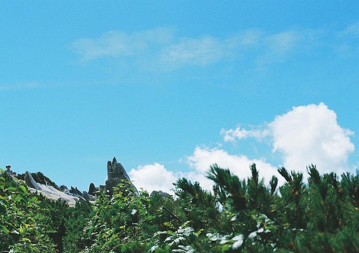 夏期休暇の画像.png